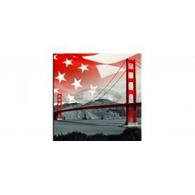 SM France Fun San Francisco mizna plošča