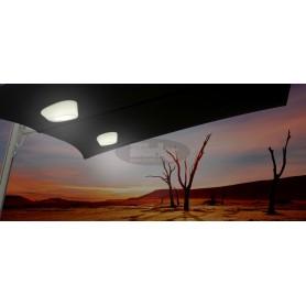 Etna RGB LED light