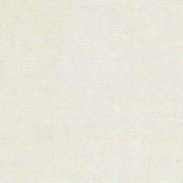 Solidum Canvas