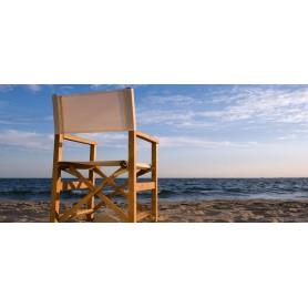 Director folding armchair